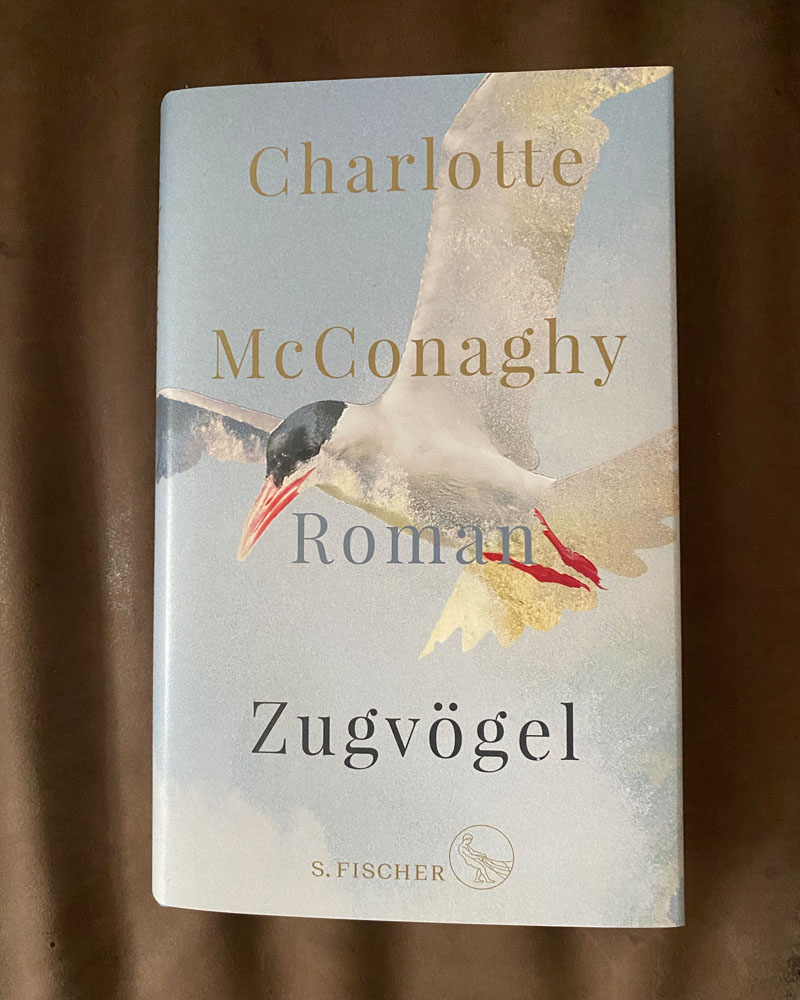zugvoegel-charlotte-mcconaghy